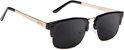 GLASSY P ROD BLACK/GOLD POLARIZED SUNGLASSES